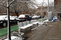 Clinton Street Snow Coat (Joel Raskin) Tags: city nyc newyorkcity winter snow les bench manhattan lowereastside citylife streetscene clintonstreet urbanlandscape winterscene urbantrees newyorkcityinwinter
