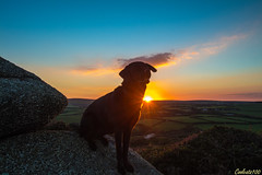 Valentine Sunset (Coolcats100) Tags: uk sunset sky dog rock canon landscape rocks cornwall sigma september fields 2015 650d canon650d coolcats100