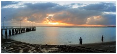 Swimming the dog at sunrise (pbaddz) Tags: people panorama dog water silhouette sunrise dawn jetty australia queensland wellingtonpoint
