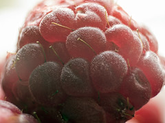 Raspberry - focus stacked (neilalderney123) Tags: macro fruit olympus raspberry focusstacked foodscape 2016neilhoward
