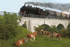 SNCF 140 C 6 avec des wagons cerealiers (hans.hirsch) Tags: 6 wagon weide c pont prairie ho brcke 187 champ khe vache sncf liliput viaduc lok 140 montbeliard wagen doubs getreide dampf viadukt cloture pature vapeur h0 rambardes cerealier