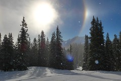Sun Dog ll (fxdx, off for holiday (mostly) :-)) Tags: dog sun snow forest halo parhelion flims lf1