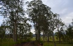 Ellem's Bridge Road (dustaway) Tags: trees landscape australia woodview nsw dirtroad australianlandscape northernrivers spottedgum richmondvalley ellemsbridgeroad