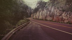 NAPA - M.LEMMON (Rafael Bojorquez Pacheco) Tags: road trip arizona naturaleza mountain nature forest us lemon camino carretera mount bosque montaa