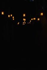 cheshire lights (olive witch) Tags: light india night outdoors january bombay portfolio mumbai bandra 2016 jan16 abeerhoque
