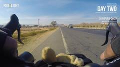 Day Two (catchsid) Tags: dog stuffedtoy india highway jaipur rajasthan ajmer gopro mirrorless hero4