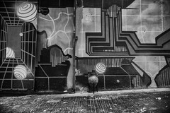 Central /  (kelvintkn) Tags: leica city blackandwhite bw digital 35mm hongkong daylight asia sony central streetphotography evil summicron fullframe manualfocus lightroom sheungwan primelens mmount mirrorless dfine2 sharpenerpro3 leicasummicronm35mmiv silverefexpro2 colourefexpro4 sonyilce7r
