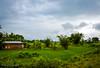 "Landscape from Assam (Paul Nicodemus) Tags: travel people mountains rain clouds landscapes skies azure adventure journey solo odyssey assam himalayas valleys unplanned tawang natives bomdila tezpur ""westbengal"" ""arunachalpradesh"" ""bumlapass"" ""selapass"" ""paulartography"" ""paulnicodemus"