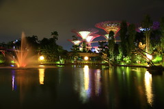 Fountain lit up (Davide C.77) Tags: park lake reflection fountain gardens night canon reflections garden dark outside pond singapore asia outdoor tress marinabay gardensbythebay marinabaysands canon6d supertreesgrove