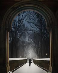 Leaving Waldorf (ShutterJack) Tags: snow castle night forest walking leaving nikon gate arch fear walls protection jameshale jimhale shutterjack
