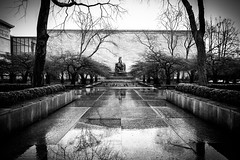 AIC garden on a wet day (VicRokOne) Tags: city blackandwhite bw chicago rainyday lion michiganave artinstitute tallbuildings vsco