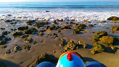 Little Whammy at El Matador State Beach (ensign_beedrill) Tags: ocean pacificocean beaches elmatador whammy elmatadorbeach elmatadorstatebeach littlewhammy malibutrip2016