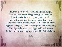 SpiritualCleansing.Org - Love, Wisdom, Inspirational Quotes & Images (SpiritualCleansing) Tags: life sadness earth branches roots happiness balance wisdom inspirational proportion depth height osho