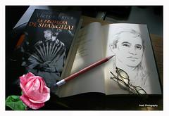 Da del Libro (Imati) Tags: rosa libro bodegn dibujo lentes lpiz