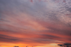 Edinburgh | Apr.2016 (Control yourself) Tags: sunset canon scotland spring edinburgh themeadows 2016 550d canon550d eos550d
