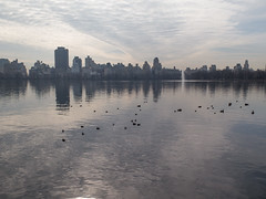 Morning Walk in Central Park-March 2016 (aloucha) Tags: park nyc newyorkcity winter newyork nature skyline canon outdoors march centralpark manhattan ducks reservoir urbannature waterfowl 2016 g16