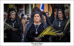 Domingo de Ramos (28) (vivas12) Tags: people espaa spain nikon gente zaragoza semanasanta saragossa manola tradicin cofrade luto domingoderamos procesin fotografiacofrade procesindelaspalmas d3100