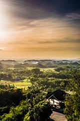 Bohol - Philippines (KekkOpS) Tags: voyage travel philippines bohol
