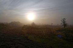 Nature Reserve in Fog - 2016-0001_Web (berni.radke) Tags: fog nebel naturereserve ameland naturschutzgebiet hollum