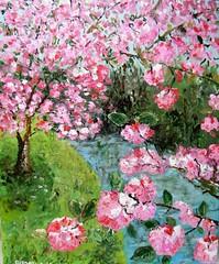 Ciliegio in fiore (sajgio) Tags: primavera colore arte rosa poesia fiori tette olio ciliegio contrasto quiete fioritura armonia oliosutela fioridiciliegio ciliegioinfiore