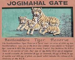 Jogimahal Gate (cn174) Tags: india nationalpark tiger tigers rajasthan ranthambhore tigerreserve ranthambhorenationalpark ranthambhorebagh