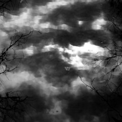 Cloud Reflections 006 (noahbw) Tags: trees winter sky blackandwhite bw distortion storm abstract blur reflection water monochrome weather silhouette clouds forest river square landscape blackwhite woods nikon dof natural branches stormy desplainesriver d5000 noahbw ryersonwoodsforestpreserve