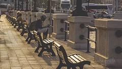 Este fue un buen lugar para recibir los ltimos rayos del sol #italia #travel #bari #peopleonthestreet #igers #ig_bari #ig_italy #igtravel #igtravel #ig_europe #igworldclub #ig_captures #igersitalia #travelphotography #travelling #sunset #instaitalia #ins (ichapineda.diseo) Tags: street travel sunset people square europe italia squareformat lungomare bari iphoneography instagramapp uploaded:by=instagram