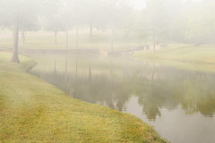 tSodeinde_ex7_MorningFog (tracysodeinde) Tags: morning nature fog morningfog creativephotography