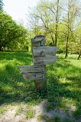 DSC_3425.jpg (Kaminscy) Tags: park spring poland signpost pl rogalin wielkopolskie drogowskaz czerniejewo