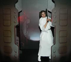 Princess Leia Organa (Pooh's World) Tags: starwars harrisonford carriefisher lukeskywalker leia hansolo anewhope markhamill hottoys princessleiaorgana
