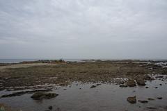 20160424-DSC_8912.jpg (d3_plus) Tags: sea sky fish beach nature japan nikon scenery diving daily snorkeling  28105mmf3545d nikkor  kanagawa hayama     dailyphoto  apnea  thesedays  28105    28105mm skindiving  zoomlense     28105mmf3545 d700 281053545 nikond700 aiafzoomnikkor28105mmf3545d 28105mmf3545af   aiafnikkor28105mmf3545d