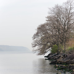 Hudson River Shores (williamagarcia) Tags: newyorkcity water marina river landscape georgewashingtonbridge dyckman 2016 henryhudsonriver