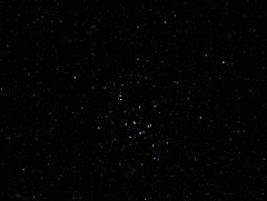 M44 Beehive Cluster (manuel.huss) Tags: sky black night dark stars space telescope astrophotography astronomy universe beehive cosmos m44 starfield deepsky starcluster