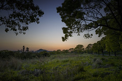 JejuEveningSun (hippo350) Tags: sunset jeju sunsetsunrise kensingtonjeju