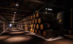 Sandeman Cellars - Bodegas Sandeman (tomasc75) Tags: portugal wine sony porto bodegas oporto vino cellars carlzeiss portwine sandeman vilanovadegaia variotessar a7r alpha7r ilce7r fe1635mmf4zaoss sel1635z