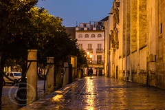 Seville Jan 2016 (12) 020 - Wet and dark in the city (Mark Schofield @ JB Schofield) Tags: santa plaza bridge parque people streets wet public caf rio architecture bar night umbrella reflections river dark ceramic puente graffiti la los spain guadalquivir san expo cathedral maria candid transport iglesia tram seville espana cruz tiles parasol universidad alcazar pavilion oranges harp andalusia cobbles encarnacion luisa giralda isla embankment metropol arenal justa triana macarena remedios cartuja alamillo bernado chapina