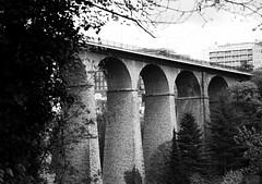Daywalker (blanscheflur) Tags: bridge white black monochrome blackwhite grau monochrom luxembourg brcke schwarz bnw luxemburg weis schwarzweis
