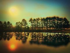 Lakeside (BLACK EYED SUZY) Tags: trees reflection tadaa lenslight