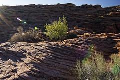 20160323-IMG_2424_DXO (dfwtinker) Tags: arizona water rock stone sunrise sand desert w page dfw whitaker glencanyondam pageaz kevinwhitaker dfwtinker ktwhitaker worthtexastraveljapan whitakerktwhitakerktwhitakervideomountainstamron