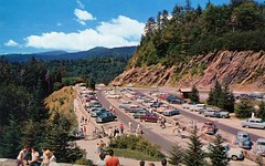 Newfound Gap, North Carolina, 1950s (cruisemagazine) Tags: from above trip two cars that one was see photo do all different you photos many postcard garage parking border gap lot jim right it off tourist here we indeed route just more stop posted same similar seeing carolina what after while their 441 yet popular came across which plenty looked origin however results positions rather carboard newfound slightly researching  likely were americas flickrstream tennesseenorth photographers chesters