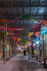 La Fiesta (Strykapose) Tags: newyorkcity dog snow storm night lights perspective tracks windy slush flags sidewalk scaffold banners jonas blizzard snowdrifts dogwalking lafiesta columbusave travelban canon5d3 strykapose 1232016 winterstormjonas