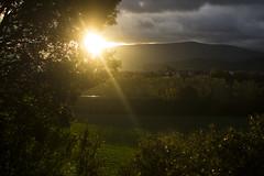 Soft whispers... of a chemical sun :) (Yoli Of Shalott) Tags: light sunset sunlight luz sol nature landscape atardecer town village paisaje ramas arbustos lightfall rayodesol