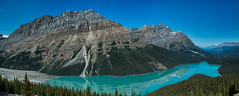 Lake Peyto Panorama (RoosterMan64) Tags: panorama lake canada reflection panoramic alberta banff peytolake canadianrockies