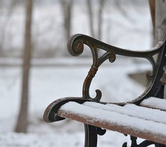 Beyond (linda_lou2) Tags: winter snow bench beyond odc day40366 366the2016edition 3662016 9feb16