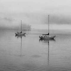 Double Fog (ecstaticist - evanleeson.com) Tags: ocean winter cloud mist canada west reflection wet fog vancouver island coast boat marine sailing calm inlet mast damp saanich
