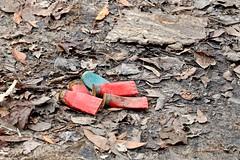 Beneath the No Trespassing Sign (Gabriel FW Koch) Tags: red shells green trash canon outside eos dof zoom bokeh outdoor hunting telephoto hunter dirtroad shotgun brass shotgunshells