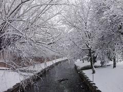 Ro Jiloca (Davide Mzz) Tags: park parque winter espaa parco snow rio river spain nieve fiume neve invierno february inverno febrero spagna febbraio aragn aragona jiloca calamocha