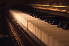 Haunting Melody (charlieshelton33) Tags: musician music contrast dark keys notes song piano haunted haunting