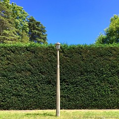 'Summer In Australia' - February, 2016 (aus.photo) Tags: blue trees summer sky green grass streetlight streetlamp australia bluesky hedge redhill canberra cloudless act cbr australiancapitalterritory ausphoto