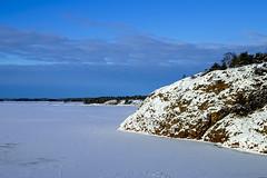 White & blue winter archipelago (Joni Mansikka) Tags: trees winter sea ice nature woodland suomi finland landscape outdoor rocky balticsea shore archipelago naantali tamronspaf1750mmf28xrdiiildasphericalif icecover